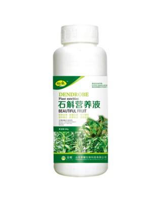 石斛营养液